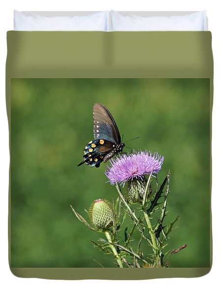 Duvet Cover featuring the photograph Pipevine Swallowtail by Sandy Keeton