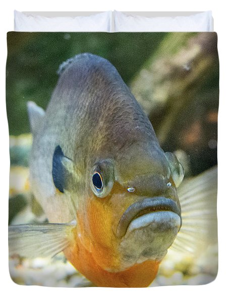 Piranha Behind Glass Duvet Cover