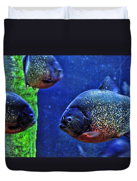Duvet Cover featuring the photograph Piranha Blue by Jan Amiss Photography