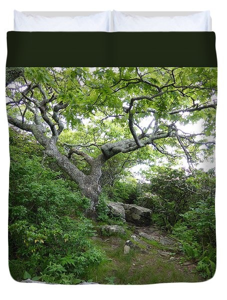 Pisgah Trail Magic Duvet Cover by Joel Deutsch