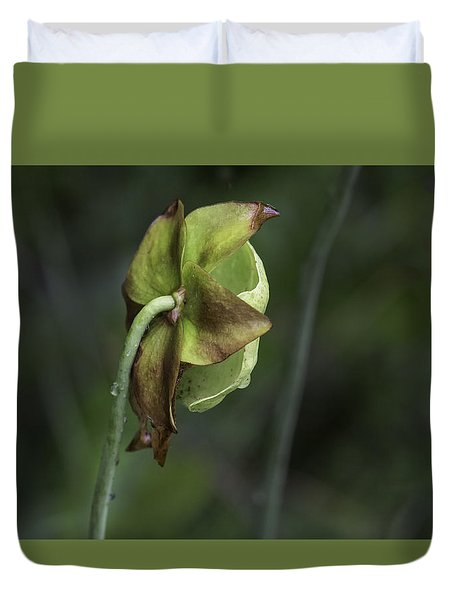 Pitcher Plant 07 Duvet Cover
