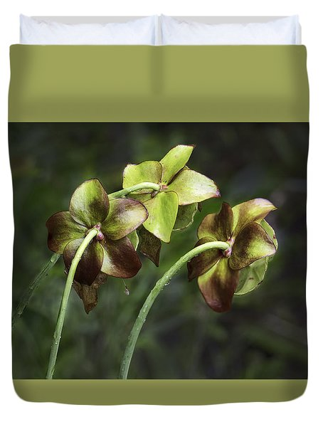 Pitcher Plant 09 Duvet Cover