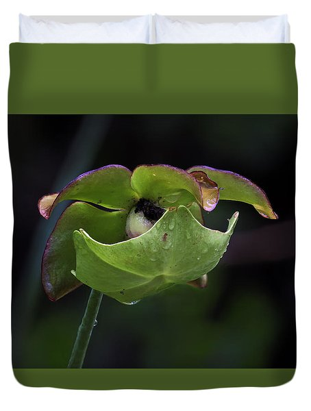 Pitcher Plant 10 Duvet Cover