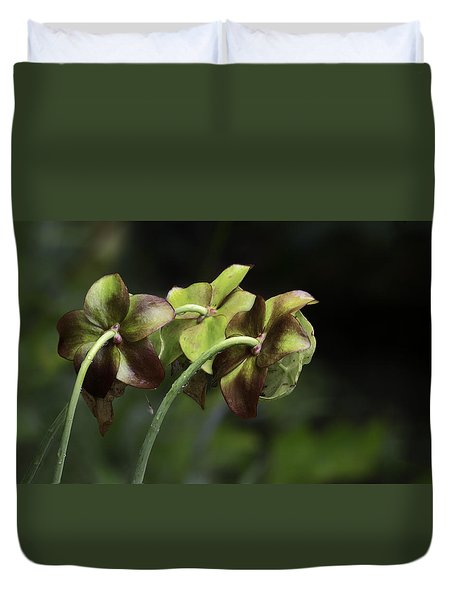 Pitcher Plant 11 Duvet Cover