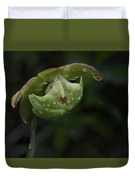 Pitcher Plant 12 Duvet Cover