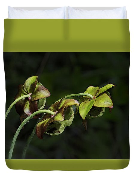 Pitcher Plant 13 Duvet Cover