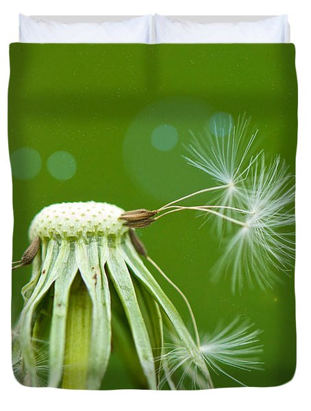 Pixie Wishes Duvet Cover by Lisa Knechtel