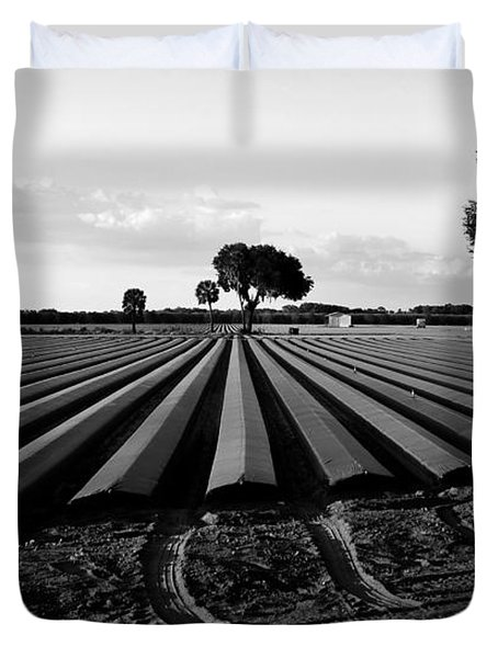 Planted Fields Duvet Cover by David Lee Thompson