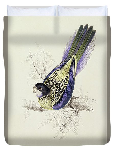 Platycercus Brownii, Or Browns Parakeet Duvet Cover by Edward Lear