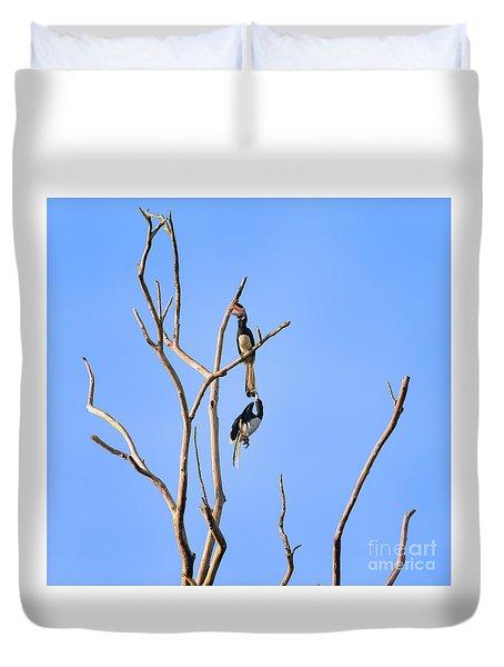 Play Time Hornbills Duvet Cover