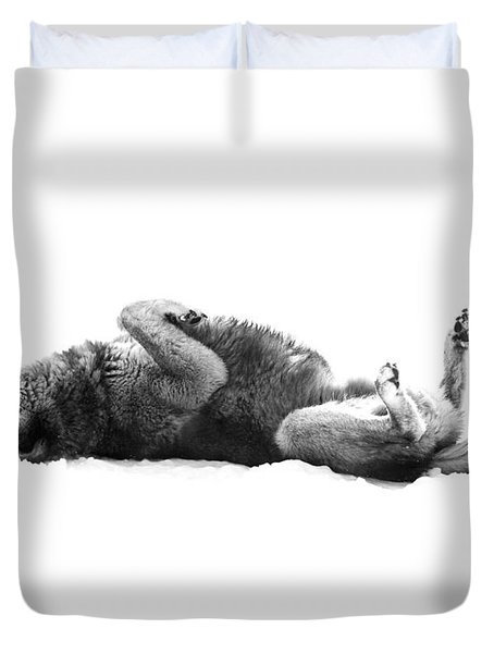 Playful Gray Wolf Photo Duvet Cover