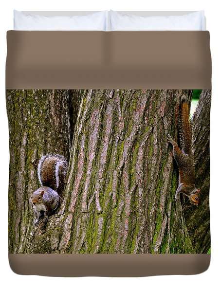 Playful Squirrels  Duvet Cover