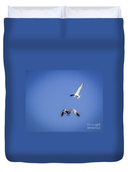 Playing Terns Duvet Cover