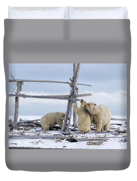 Playtime In The Arctic Duvet Cover