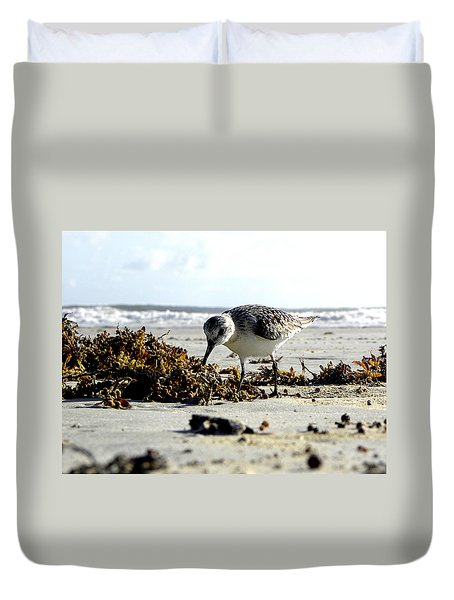 Plover On Daytona Beach Duvet Cover