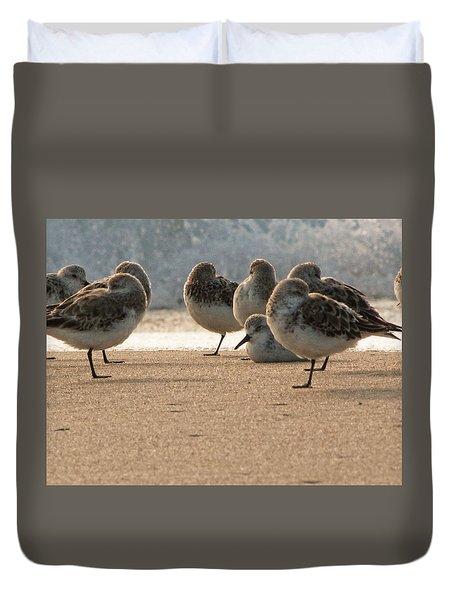 Plovers In The Morning Sunlight Duvet Cover