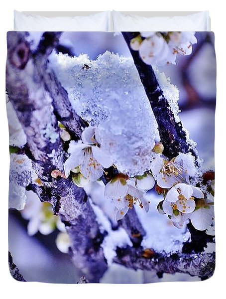 Plum Blossoms In Snow Duvet Cover