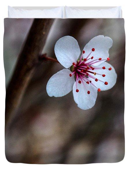 Plum Flower Duvet Cover