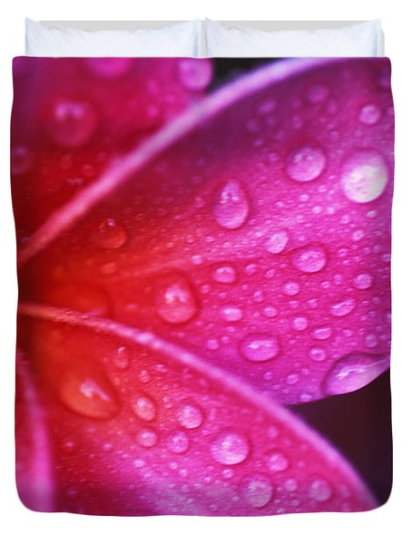 Plumeria Blossom Duvet Cover by Ron Dahlquist - Printscapes
