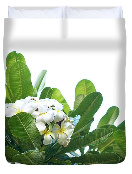 Duvet Cover featuring the photograph Plumeria by Cindy Garber Iverson