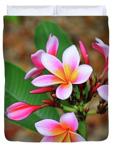 Plumeria Flower Art - Tropical Queen - Sharon Cummings Duvet Cover