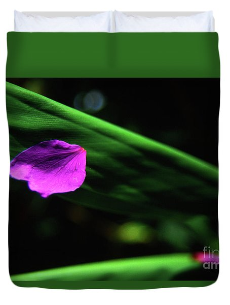 Plumeria Flower Petal On Plumeria Leaf- Kauai- Hawaii Duvet Cover