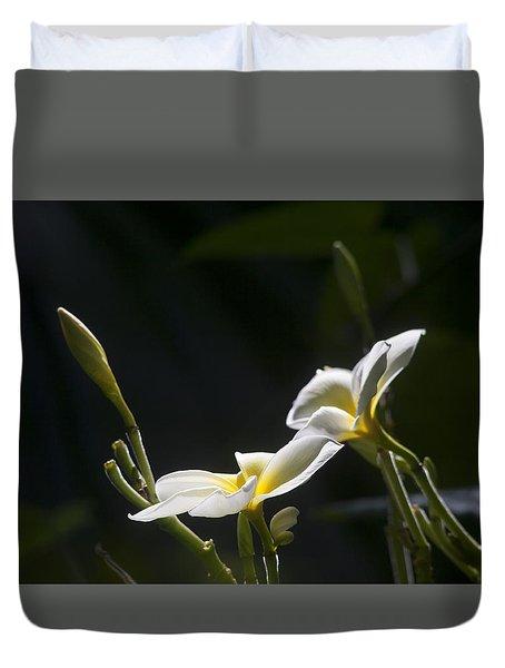 Plumeria Duvet Cover