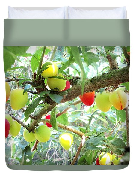Plums On A Branch Duvet Cover