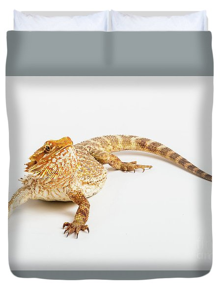 Pogona Isolated Duvet Cover