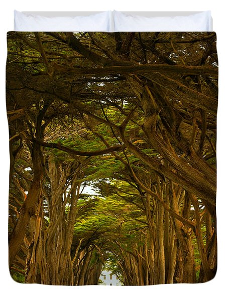 Point Reyes Cypress Tunnel Duvet Cover