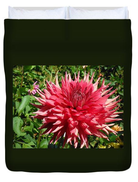 Pointed Pink Dahlia  Duvet Cover