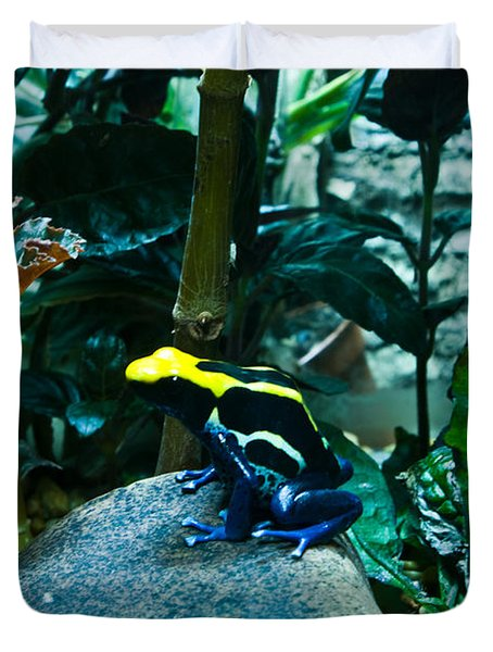Poison Dart Frog Poised For Leap Duvet Cover