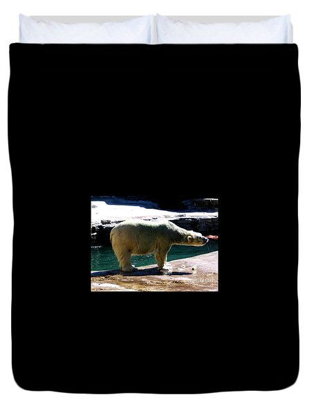 Duvet Cover featuring the photograph Polar Bear 3 by Rose Santuci-Sofranko