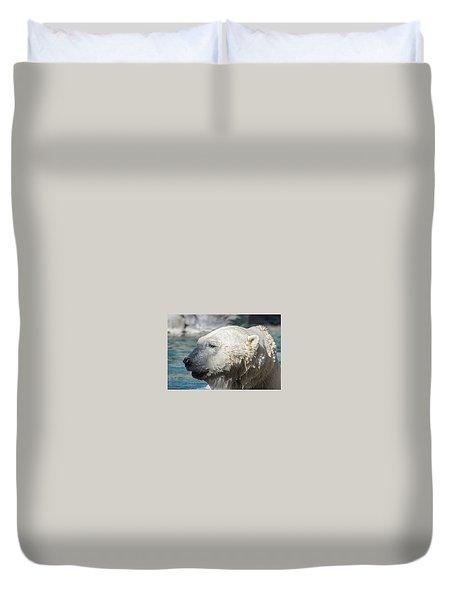 Polar Bear Club Duvet Cover
