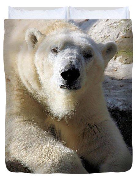 Polar Bear Duvet Cover by Karol Livote