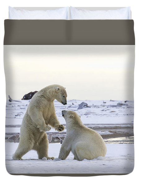Polar Bear Play-fighting Duvet Cover
