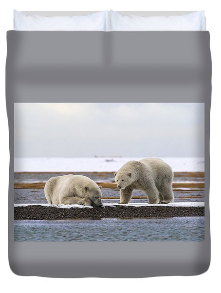 Polar Bear Zzzzzzz's Duvet Cover