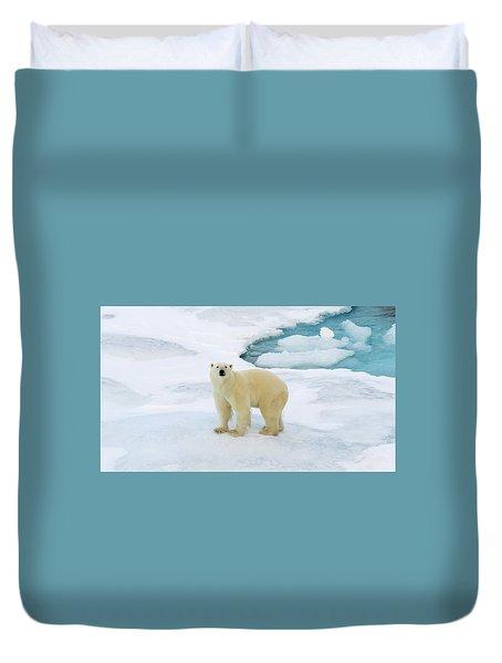 Polar Gaze Duvet Cover