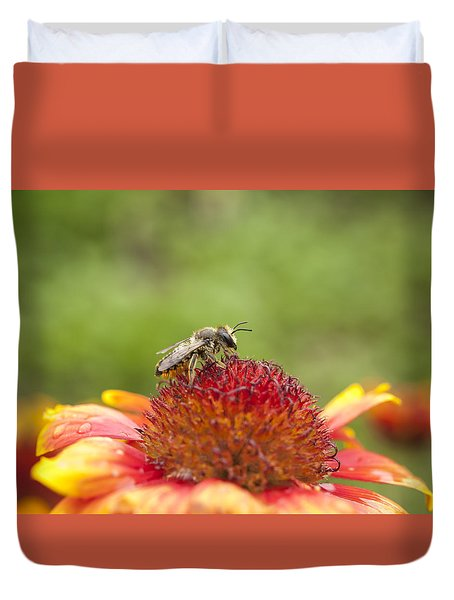 Pollinator And Flower Duvet Cover by Thomas Young
