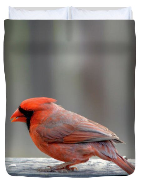 Pondering On The Fence Duvet Cover