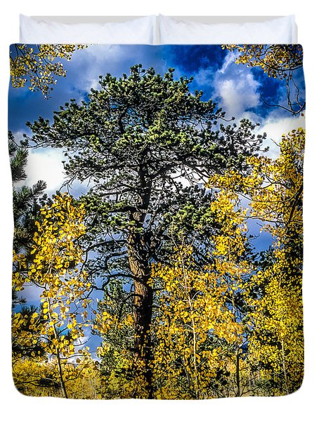 Ponderosa  Tree In The Aspens Of Fall Colorado Duvet Cover by John Brink