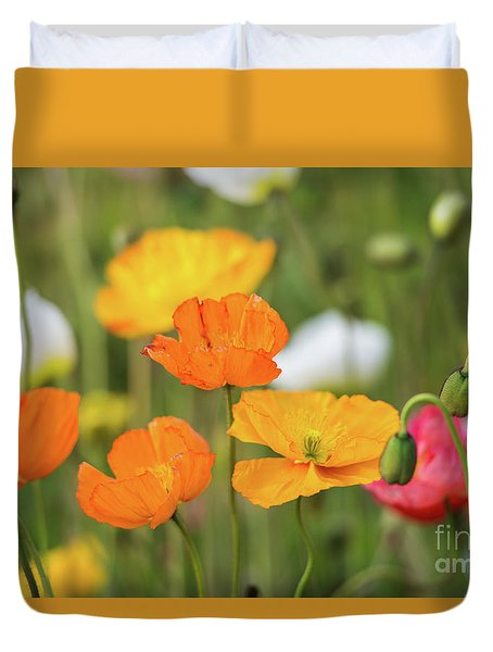 Duvet Cover featuring the photograph  Poppies 1 by Werner Padarin