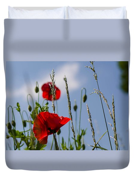 Poppies In The Skies Duvet Cover