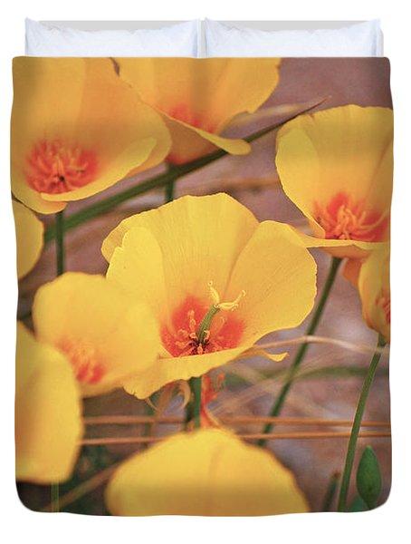Poppies On Mount Lemmon Duvet Cover