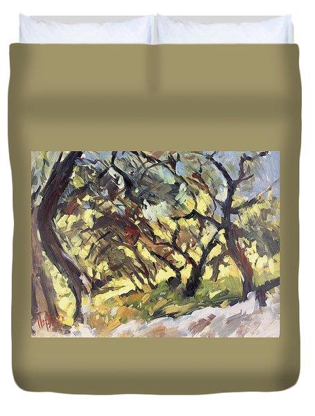 Popping Sunlight Through The Olive Grove Duvet Cover