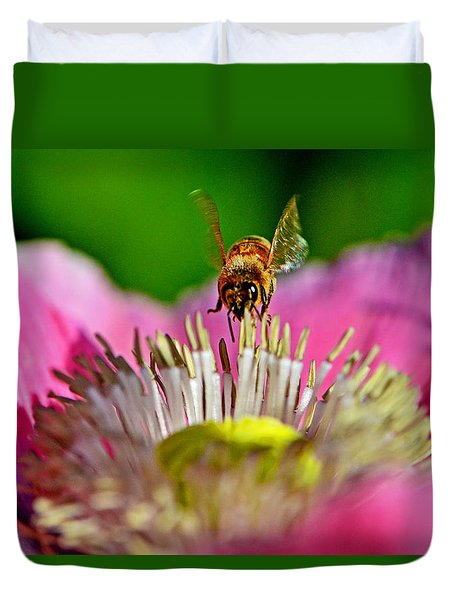Poppy And A Bee 006 Duvet Cover by George Bostian