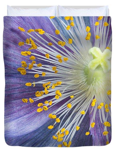 Poppy Fireworks Duvet Cover