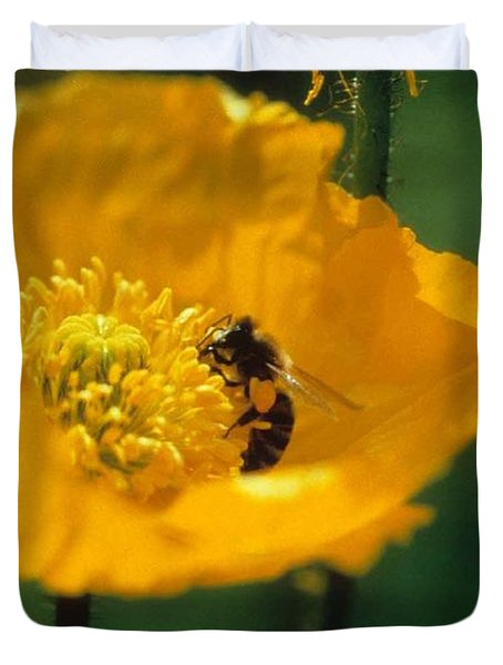 Poppy With Bee Friend Duvet Cover by Laurie Paci