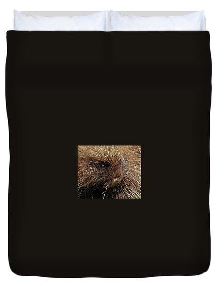 Duvet Cover featuring the photograph Porcupine by Glenn Gordon