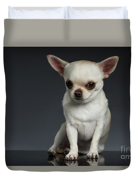Portrait Little Chihuahua Dog Sitting On Dark Backgroun Duvet Cover by Sergey Taran